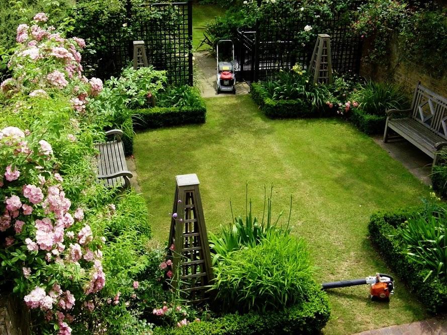jardin débroussaillé
